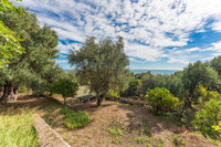 French property, houses and homes for sale inCap-d'AilAlpes-Maritimes Provence_Cote_d_Azur