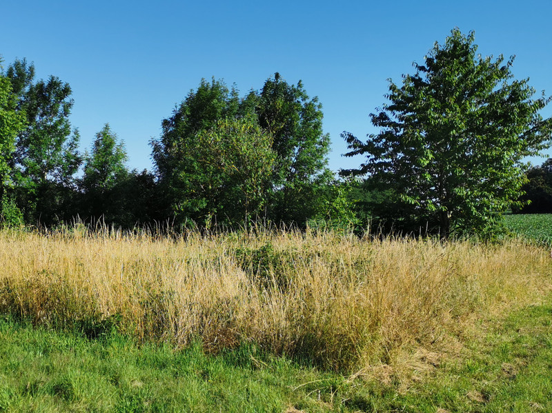 French property for sale in Voulême, Vienne - €14,900 - photo 2