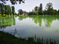 French property, houses and homes for sale in Condom Gers Midi_Pyrenees