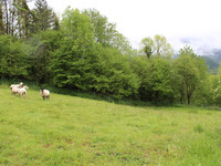French property, houses and homes for sale inSévignacq-MeyracqPyrenees_Atlantiques Aquitaine