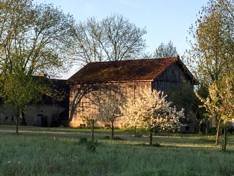 French property for sale in Trémolat, Dordogne - €117,700 - photo 6