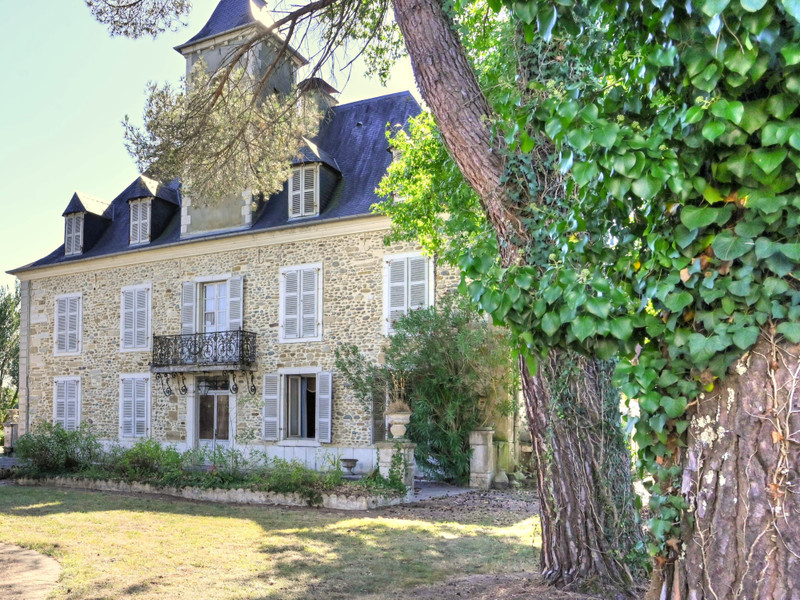 French property for sale in Sauveterre-de-Béarn, Pyrenees Atlantiques - €550,000 - photo 5