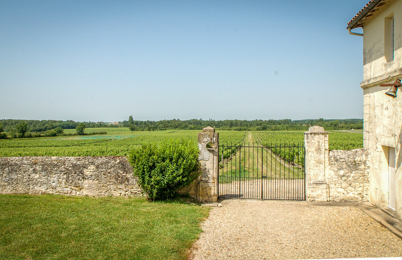 French property for sale in Fours, Gironde - €1,575,000 - photo 3