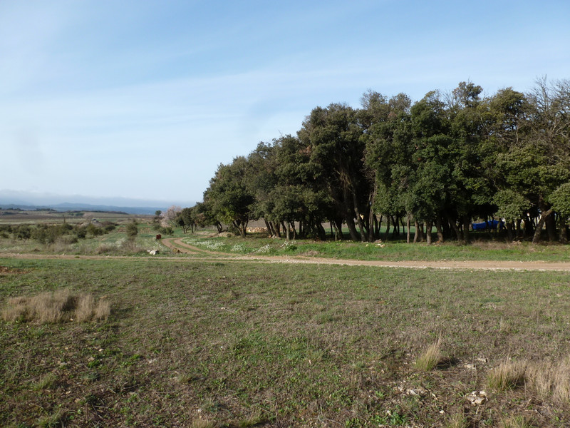 French property for sale in Agel, Herault - €69,600 - photo 4