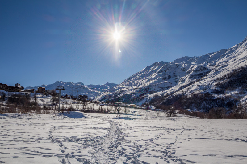 French property for sale in LES MENUIRES, Savoie - €2,239,365 - photo 3