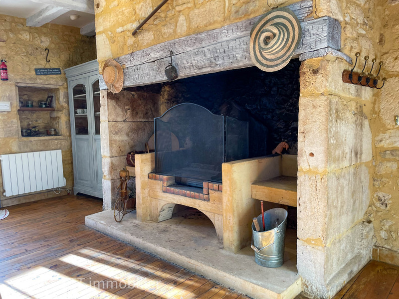 French property for sale in Sainte-Mondane, Dordogne - €875,000 - photo 7