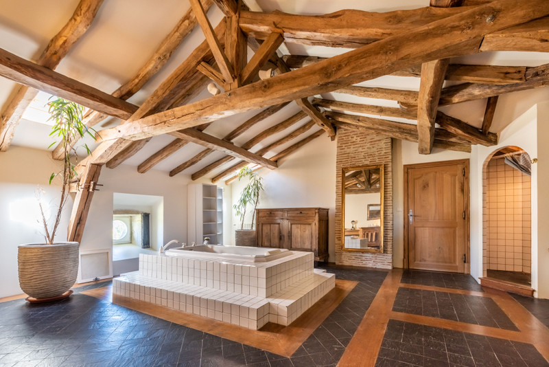 French property for sale in Nérac, Lot et Garonne - €2,950,000 - photo 11