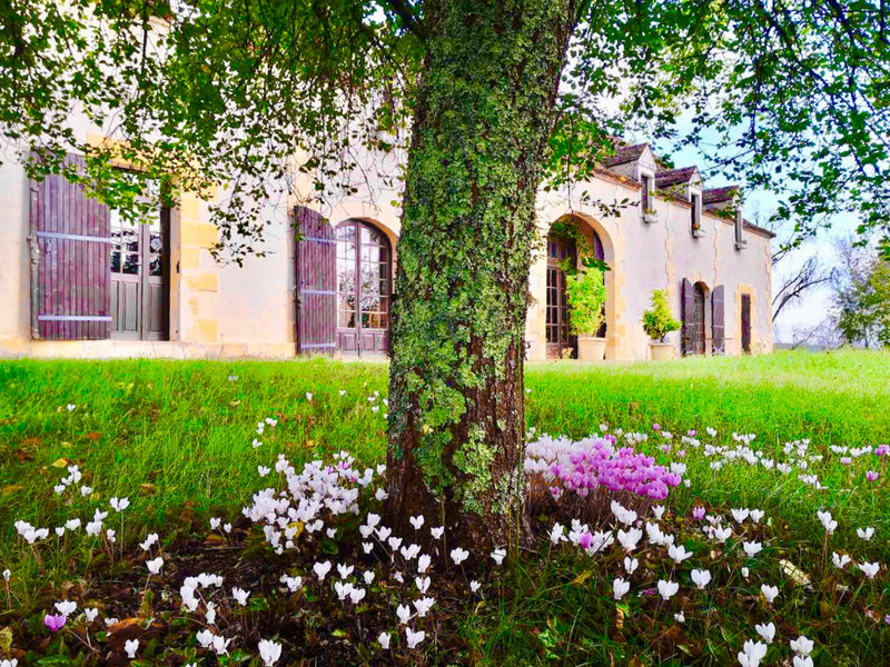 French property for sale in Saint-Pierre-d'Eyraud, Dordogne - €526,000 - photo 7