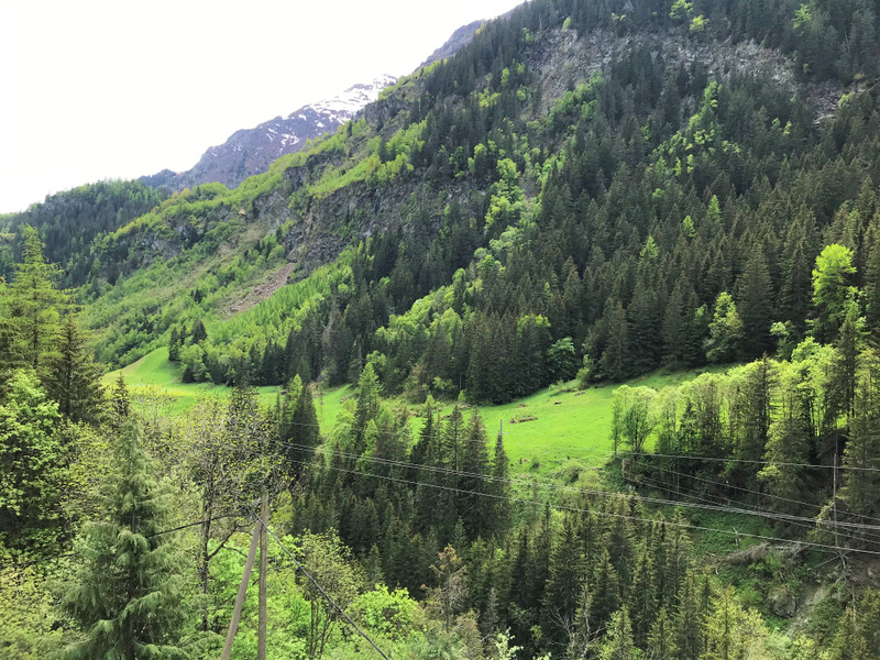 French property for sale in Sainte-Foy-Tarentaise, Savoie - €795,000 - photo 3