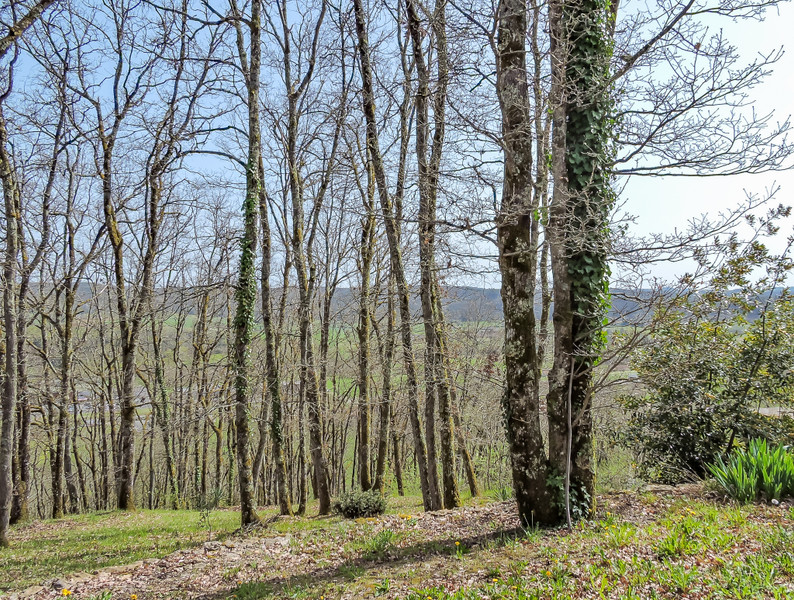 French property for sale in Montignac, Dordogne - €120,000 - photo 10