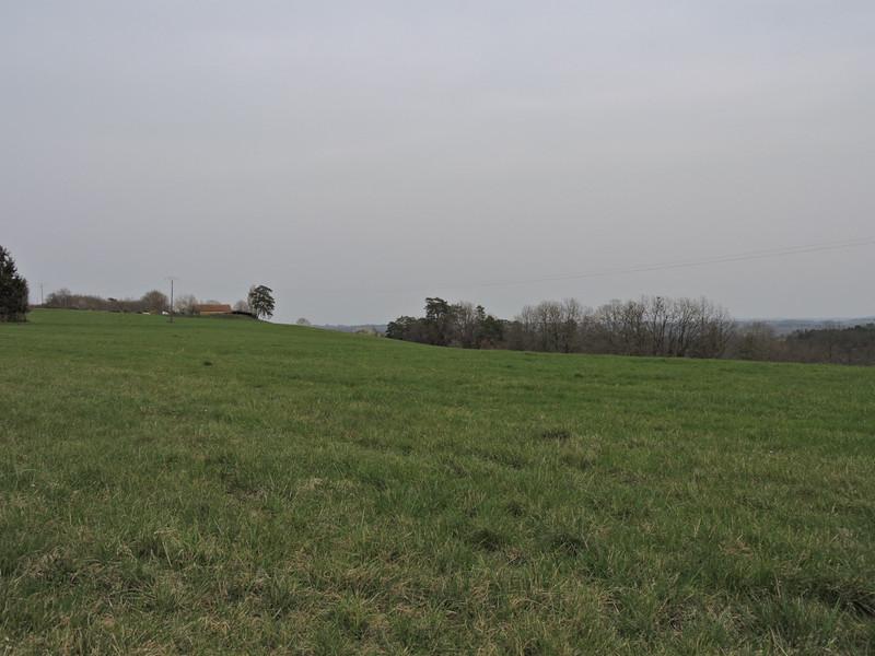 French property for sale in Rouffignac-Saint-Cernin-de-Reilhac, Dordogne - €56,600 - photo 2