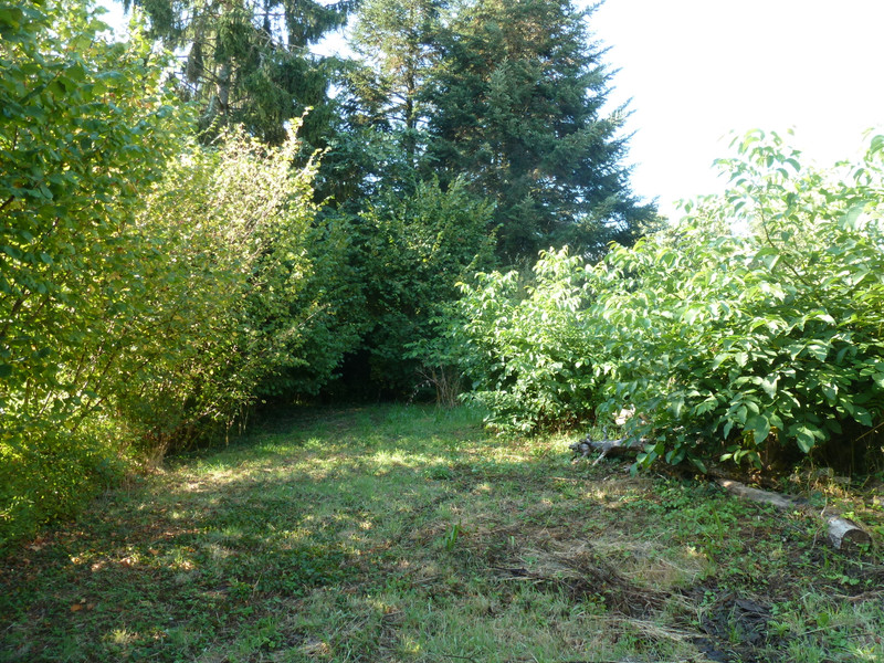 French property for sale in Les Salles-Lavauguyon, Haute Vienne - €16,000 - photo 5