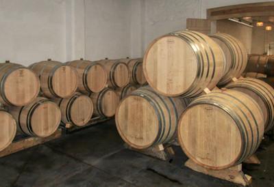 vineyardin Blaye