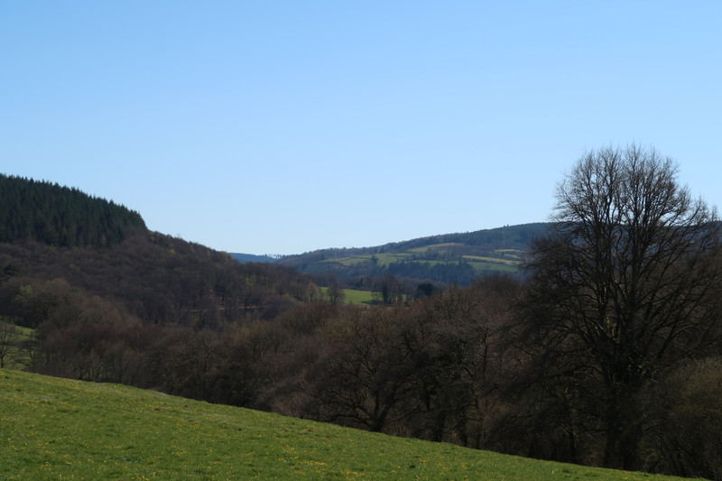 French property for sale in Eymoutiers, Haute Vienne - €345,000 - photo 10