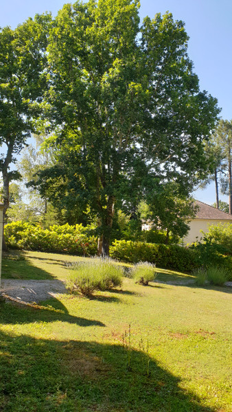 French property for sale in Chancelade, Dordogne - €490,000 - photo 4