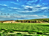 French property, houses and homes for sale inMontpellierHérault Languedoc_Roussillon