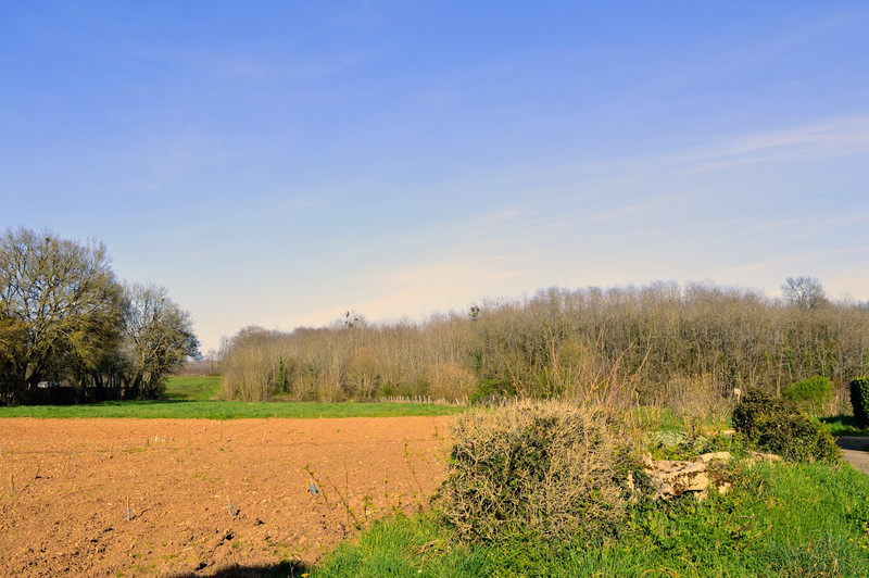 French property for sale in Lussac, Charente - €68,160 - photo 4