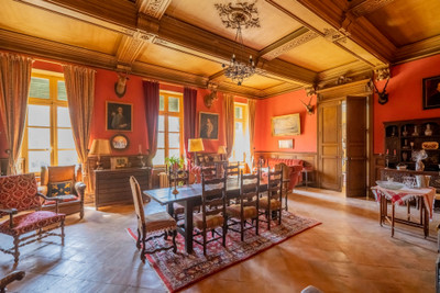 Striking 16th century Château on the banks of the Canal du Midi in good condition and close to amenities