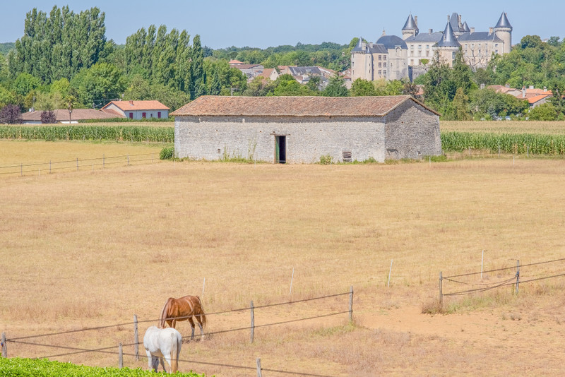 French property for sale in Verteuil-sur-Charente, Charente - €1,085,000 - photo 10