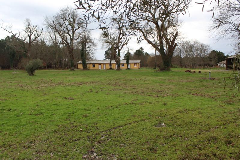 French property for sale in Parentis-en-Born, Landes - €901,000 - photo 5