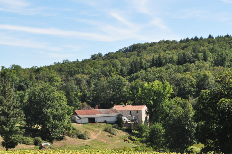 French property for sale in Saint-Estèphe, Dordogne - €1,606,500 - photo 2