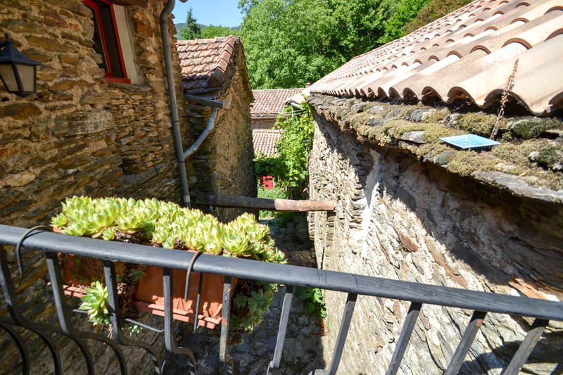 French property for sale in Chamborigaud, Gard - €997,500 - photo 4