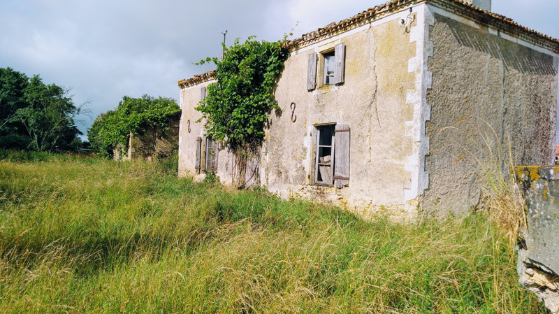 French property for sale in Le Chillou, Deux-Sèvres - €29,000 - photo 7