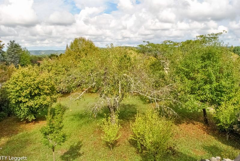 French property for sale in Le Buisson-de-Cadouin, Dordogne - €267,500 - photo 10