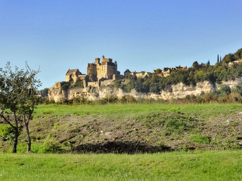 French property for sale in Beynac-et-Cazenac, Dordogne - €34,655 - photo 3