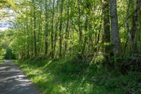 terrain à vendre à Mialet, Dordogne, Aquitaine, avec Leggett Immobilier