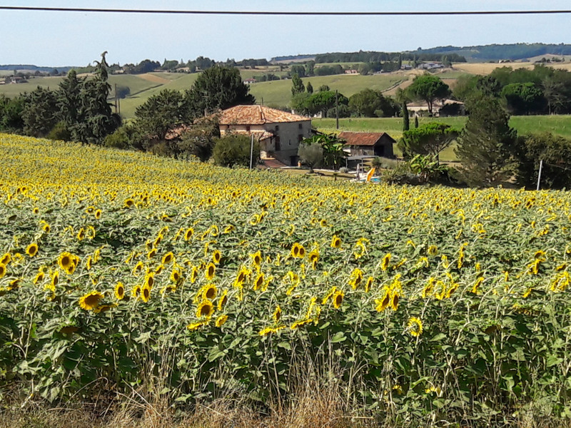 French property for sale in Tonneins, Lot et Garonne - €397,500 - photo 2