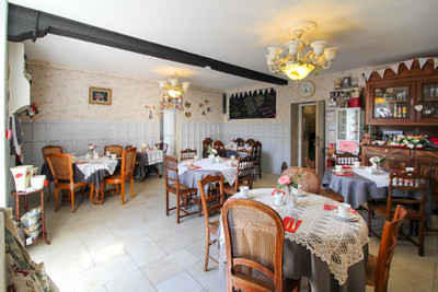 Magnificent 7-bedroomed Château, ideal family home/BnB and Events, many possibilities, on 3.8acres near Niort.