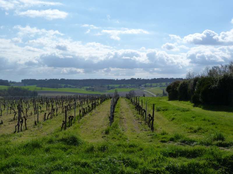 French property for sale in Mérignac, Charente Maritime - €355,100 - photo 10