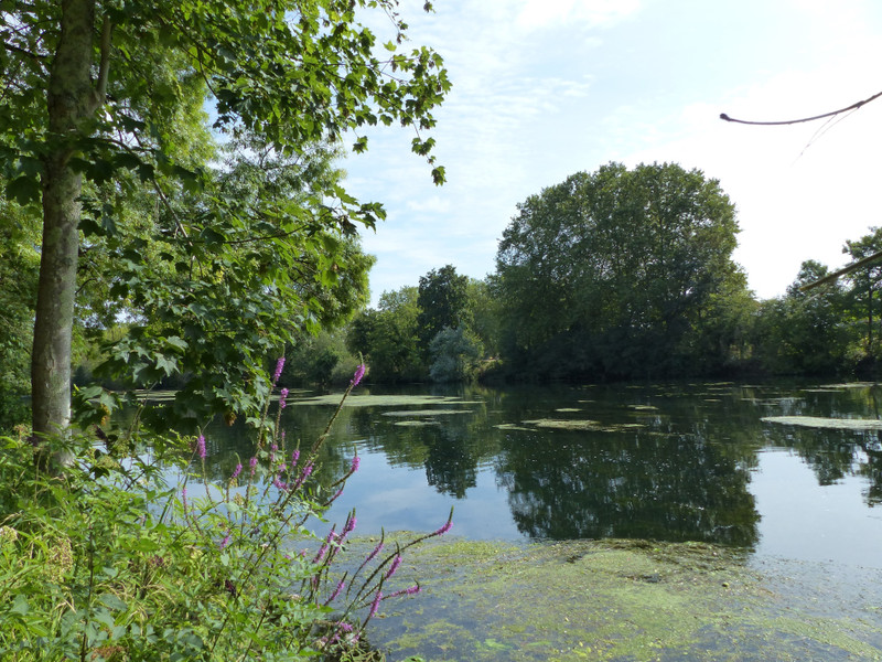 French property for sale in Fléac, Charente - €42,400 - photo 9