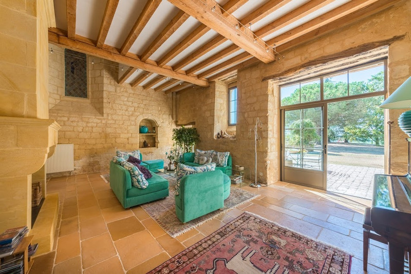 French property for sale in Monsac, Dordogne - €1,470,000 - photo 3