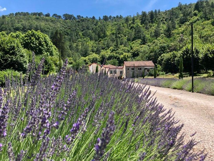 Chateau à vendre à Branoux-les-Taillades(30110) - Gard