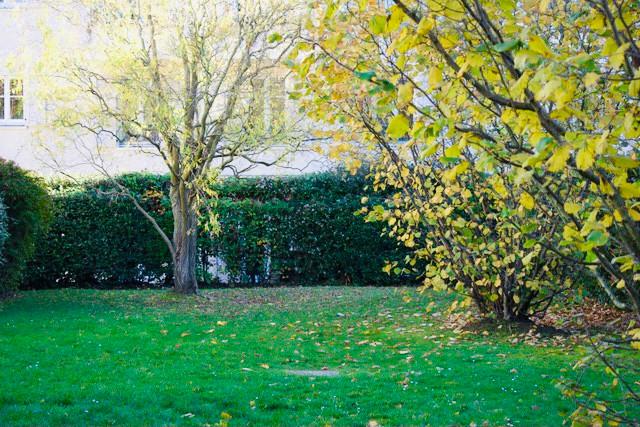 French property for sale in Saint-Germain-en-Laye, Yvelines - €595,000 - photo 10