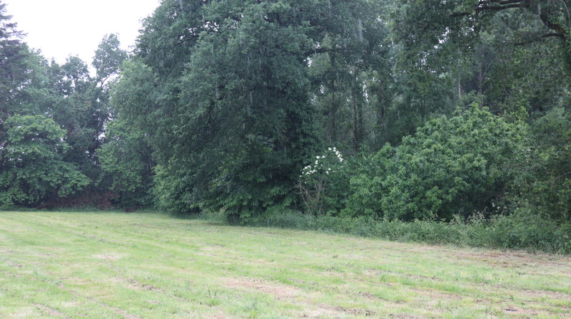 French property for sale in Saint-Martin-sur-Oust, Morbihan - €66,600 - photo 5